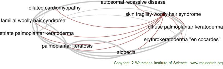Diseases related to Skin Fragility-Woolly Hair Syndrome
