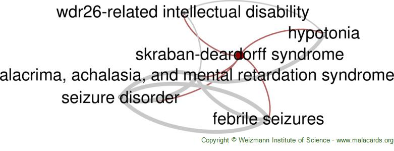 Diseases related to Skraban-Deardorff Syndrome
