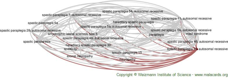 Diseases related to Spastic Paraplegia 15, Autosomal Recessive