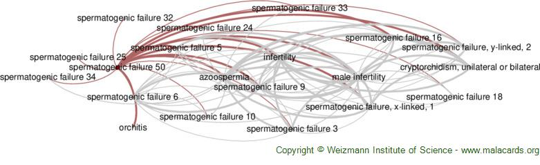 Diseases related to Spermatogenic Failure 50