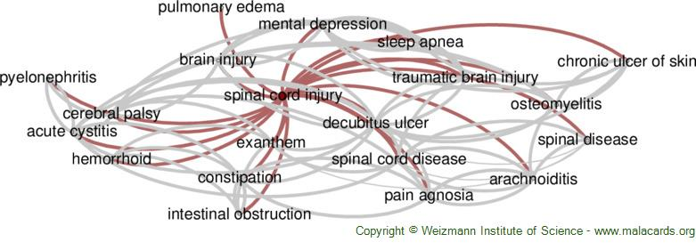 Diseases related to Spinal Cord Injury