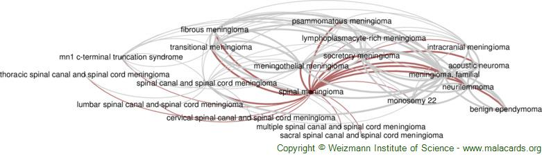 Diseases related to Spinal Meningioma