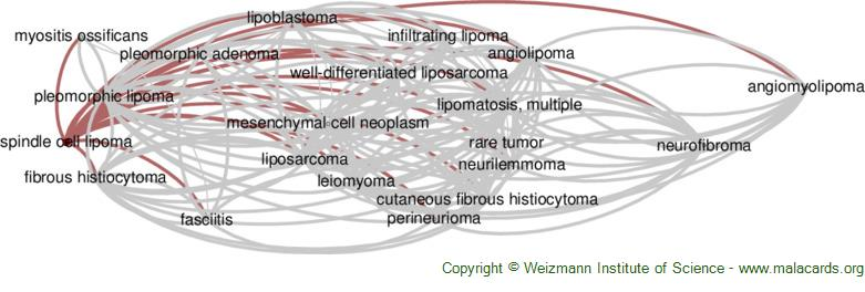 Diseases related to Spindle Cell Lipoma