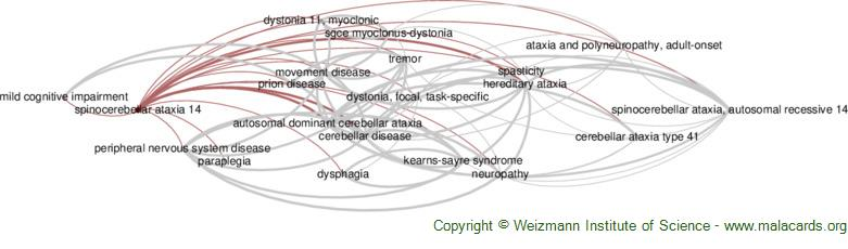 Diseases related to Spinocerebellar Ataxia 14