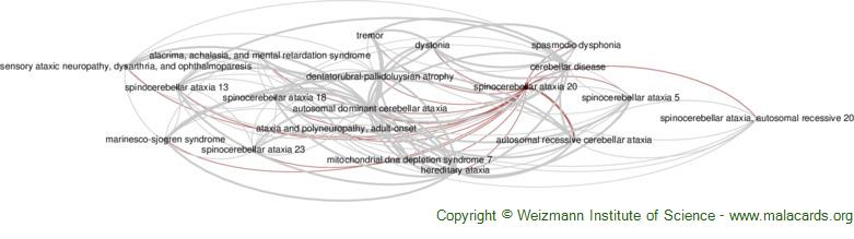 Diseases related to Spinocerebellar Ataxia 20