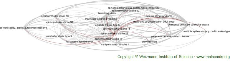 Diseases related to Spinocerebellar Ataxia 23