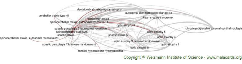 Diseases related to Spinocerebellar Ataxia 28