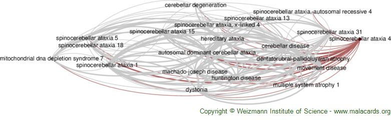Diseases related to Spinocerebellar Ataxia 4