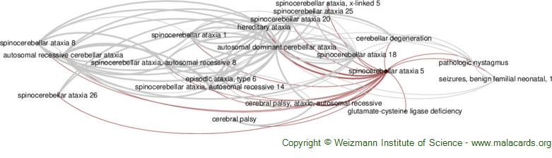 Diseases related to Spinocerebellar Ataxia 5