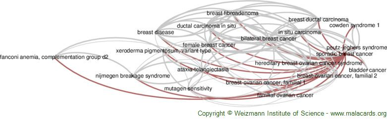 Diseases related to Sporadic Breast Cancer
