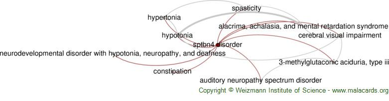 Diseases related to Sptbn4 Disorder