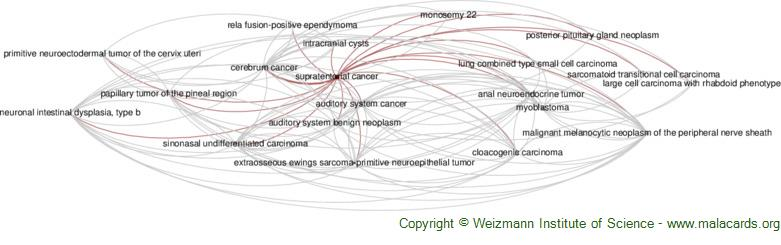 Diseases related to Supratentorial Cancer