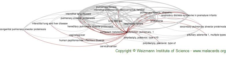 Diseases related to Surfactant Metabolism Dysfunction, Pulmonary, 1
