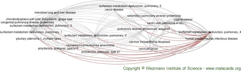 Diseases related to Surfactant Metabolism Dysfunction, Pulmonary, 4