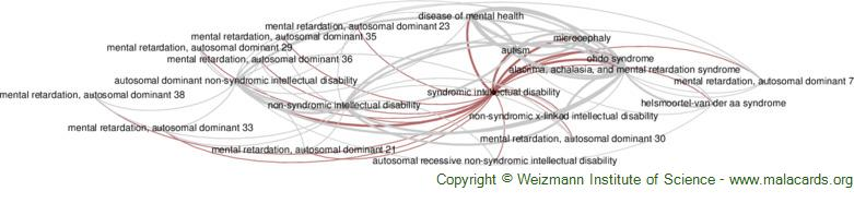 Diseases related to Syndromic Intellectual Disability