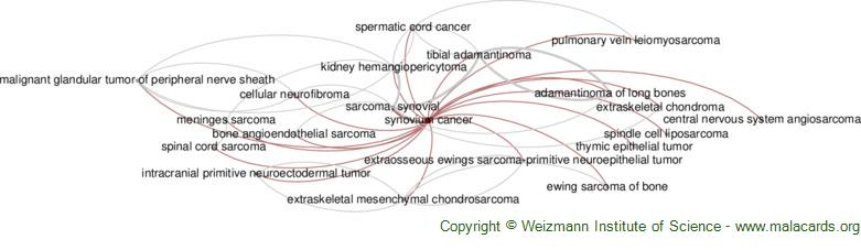 Diseases related to Synovium Cancer
