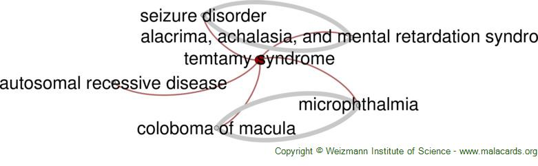 Diseases related to Temtamy Syndrome