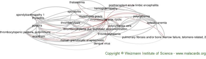 Diseases related to Thrombocytopenia, Cyclic