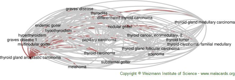 Diseases related to Thyroid Gland Anaplastic Carcinoma