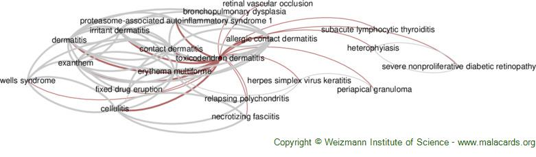 Diseases related to Toxicodendron Dermatitis