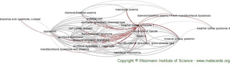 Diseases related to Treacher Collins Syndrome 1