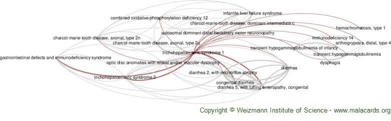 Diseases related to Trichohepatoenteric Syndrome 1