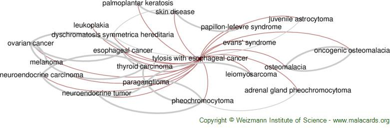 Diseases related to Tylosis with Esophageal Cancer