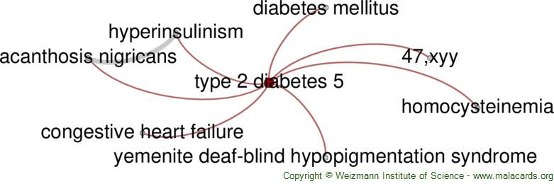 Diseases related to Type 2 Diabetes 5
