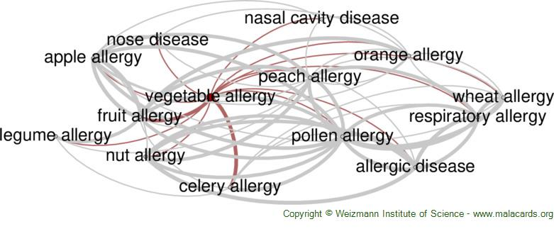 Diseases related to Vegetable Allergy