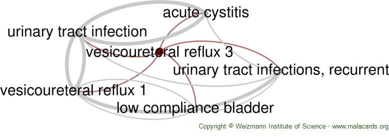 Diseases related to Vesicoureteral Reflux 3