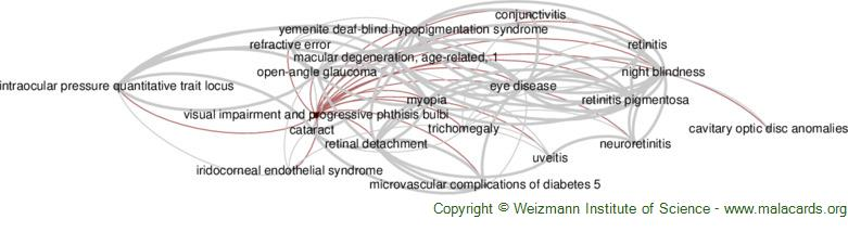 Diseases related to Visual Impairment and Progressive Phthisis Bulbi