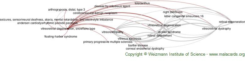 Diseases related to Vitreoretinal Degeneration, Snowflake Type