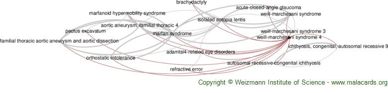 Diseases related to Weill-Marchesani Syndrome 4