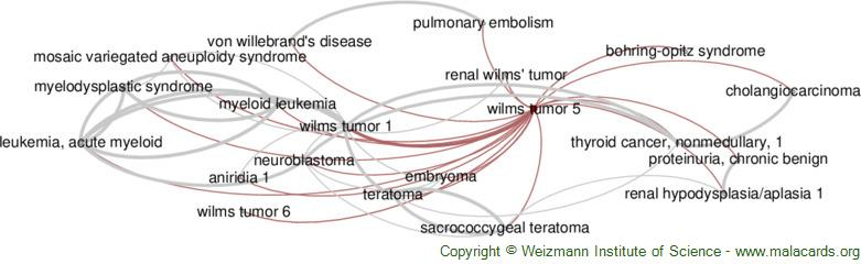 Diseases related to Wilms Tumor 5