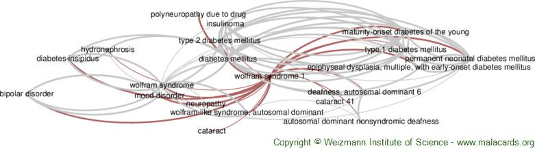 Diseases related to Wolfram Syndrome 1
