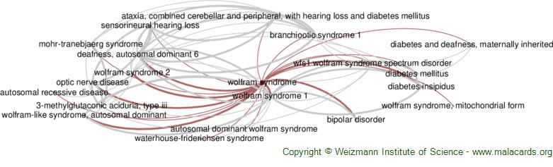 Diseases related to Wolfram Syndrome