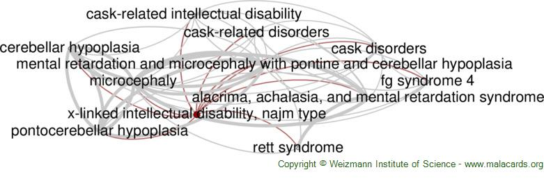 Diseases related to X-Linked Intellectual Disability, Najm Type