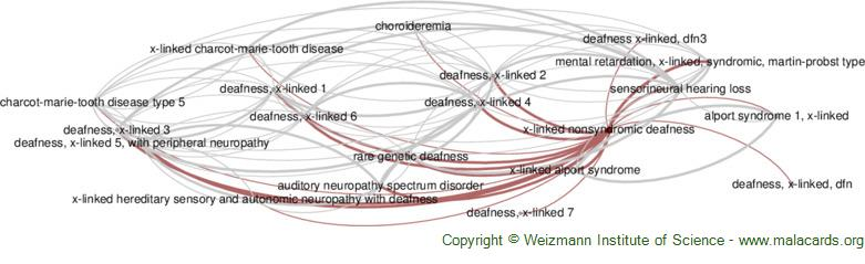 Diseases related to X-Linked Nonsyndromic Deafness
