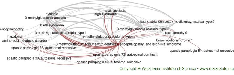 Diseases related to 3-Methylglutaconic Aciduria with Deafness, Encephalopathy, and Leigh-Like Syndrome
