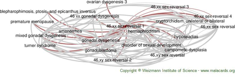 Diseases related to 46,xx Sex Reversal 1