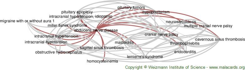 Diseases related to Abducens Nerve Disease
