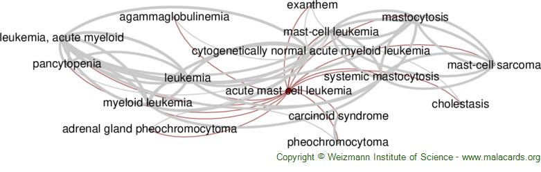Diseases related to Acute Mast Cell Leukemia