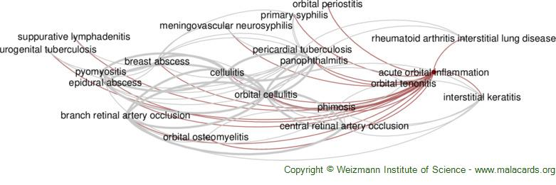 Diseases related to Acute Orbital Inflammation