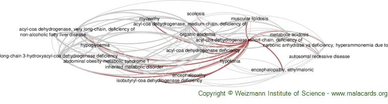 Diseases related to Acyl-Coa Dehydrogenase, Short-Chain, Deficiency of