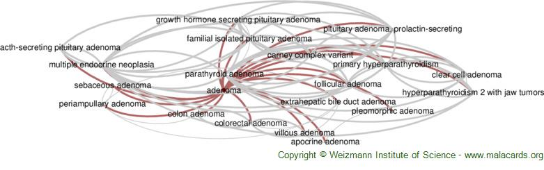 Diseases related to Adenoma