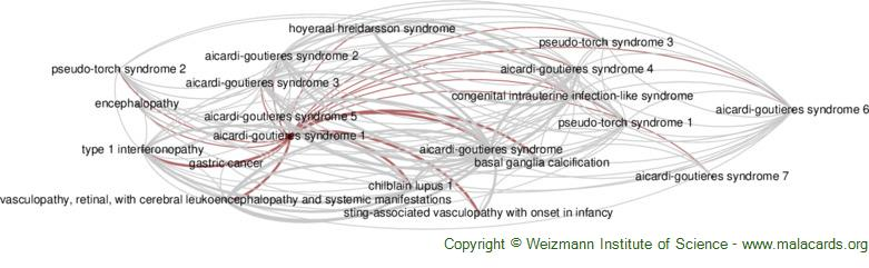 Diseases related to Aicardi-Goutieres Syndrome 1