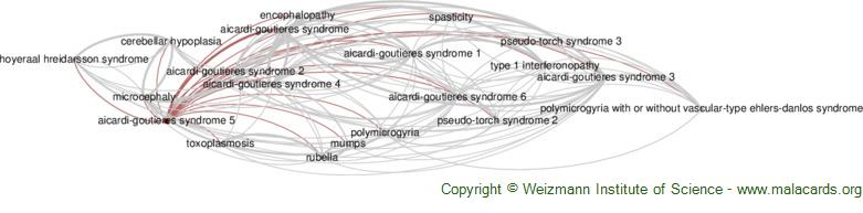 Diseases related to Aicardi-Goutieres Syndrome 5