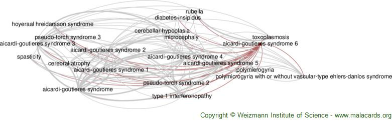 Diseases related to Aicardi-Goutieres Syndrome 6