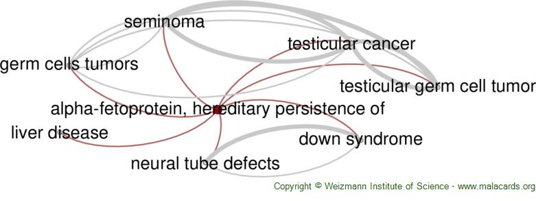 Diseases related to Alpha-Fetoprotein, Hereditary Persistence of