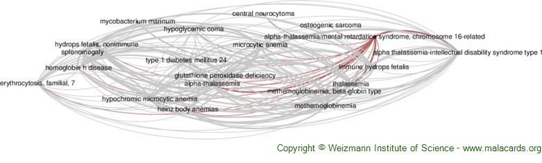 Diseases related to Alpha-Thalassemia/mental Retardation Syndrome, Chromosome 16-Related